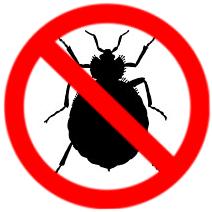 bed bug control Burlington