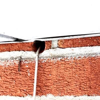 mouse inspection mice exterminator 1 Burlington