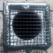 rodent exclusion Burlington